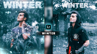 New Lightroom Winter Presets free download