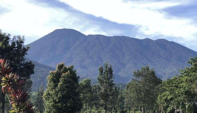 Nekat Relaksasi PSBB, Kurva Corona Indonesia Diprediksi seperti 'Gunung Gede'