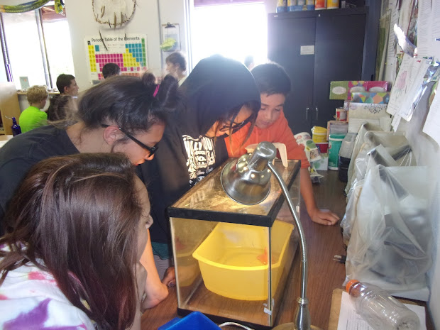 Tisa Grade 6 -2017 8th Science Class- Making