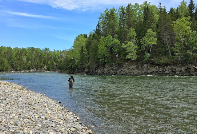 Jessie fishing the beautiful run at Burnett, Sector 1 on the St. Jean River, Gaspé