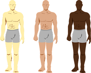 nama-nama anggota tubuh dalam bahasa arab
