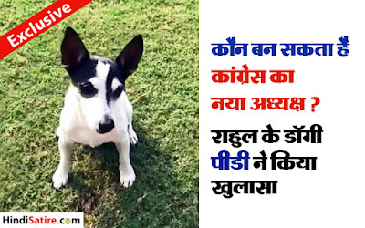 jokes on congress, rahul dog PIDI, राहुल का कुत्ता पीडी, राहुल गांधी जोक्स
