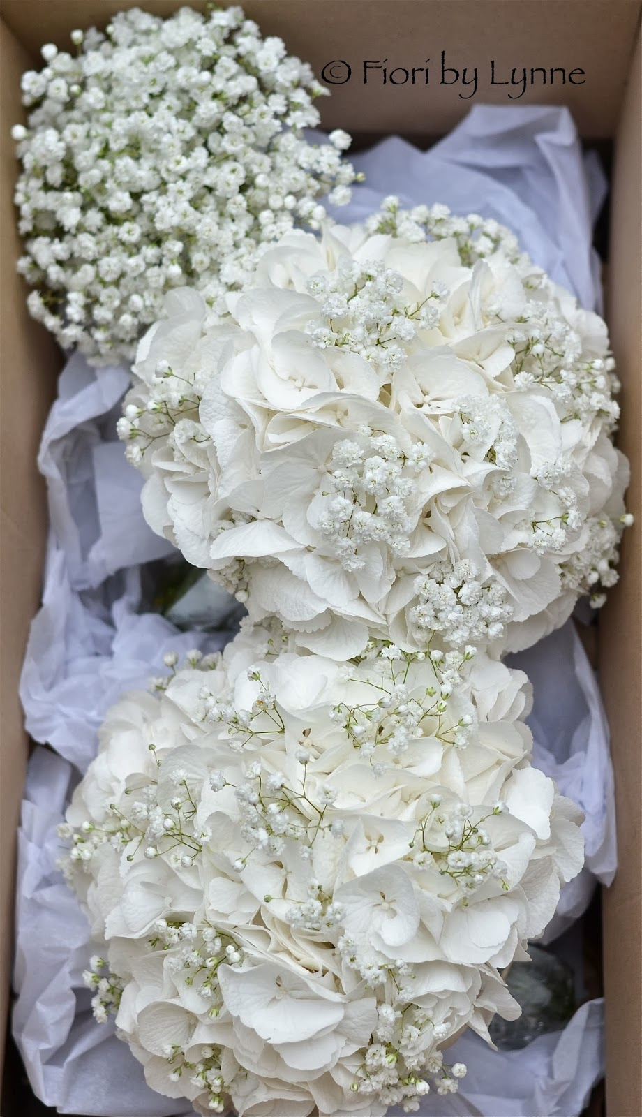 white hydrangea wedding bouquet wedding flowers december 2013 1342