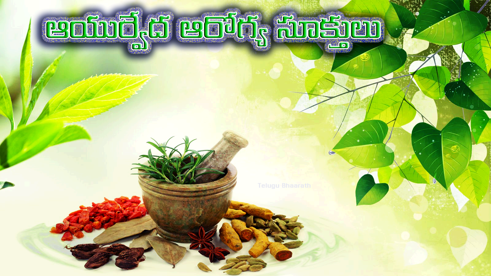 రహస్య ఆయుర్వేద ఆరోగ్య సూక్తులు - Ayurveda Suktulu