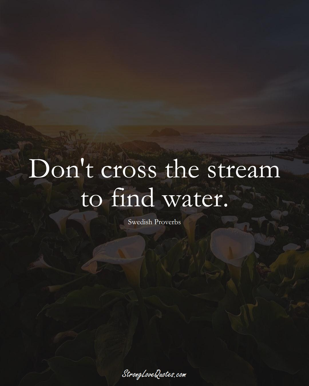 Don't cross the stream to find water. (Swedish Sayings);  #EuropeanSayings