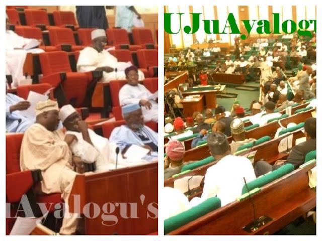 Reps block Senate's move to cut Nigerian president's powers