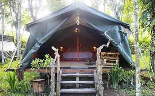 Penginapan Baliwoso Camp