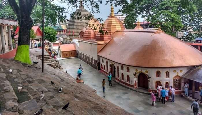Tantrik Baba in Assam, Kamakhya, Mayong, Guwahati