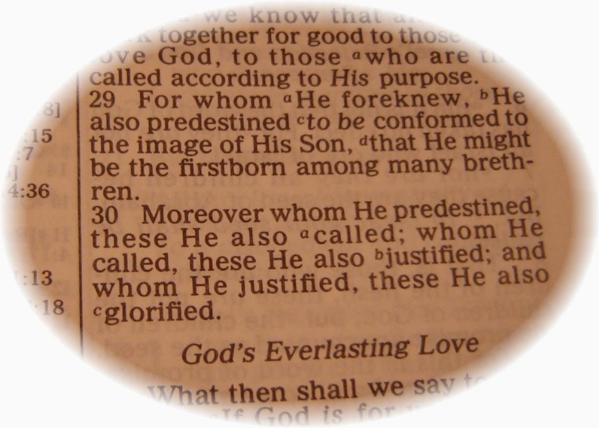 Romaket 8:29, zgjedhja, paranjohja, pese pikat e Kalvinizmit