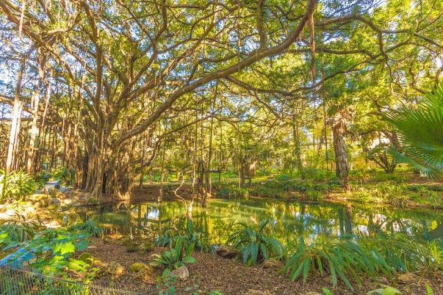 El Hamma Jardin. Botanical Garden