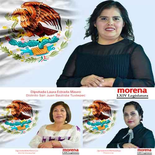 Legalización FasTrak del aborto en Oaxaca