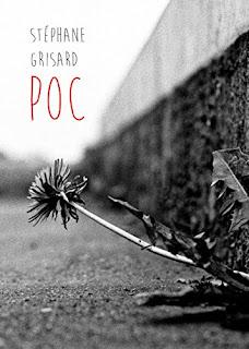 POC de Stephane Grisard PDF