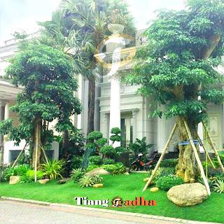 contoh taman