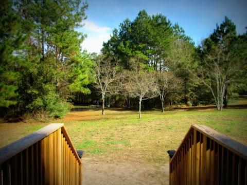 Yule At Celestial Pines