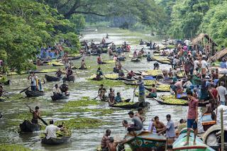 mercado de la guayaba en Bangladesh