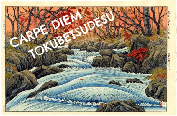 carpe diem haiku kai carpe diem tokubetsudesu special the carpe diem tokubetsudesu special 1 the poet s craft an essay written by kim russell