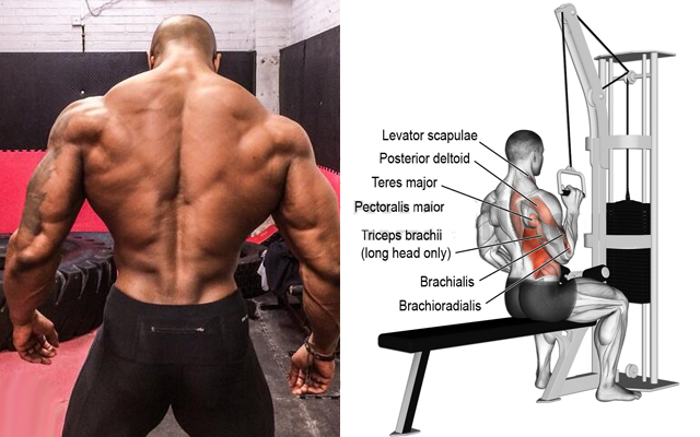 5 Best Exercises To Build Massive Back