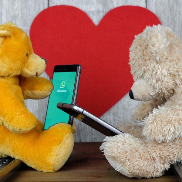 Perhatikan Etika di Grup WhatsApp Keluarga, Agar Silaturahim Tetap Terjaga