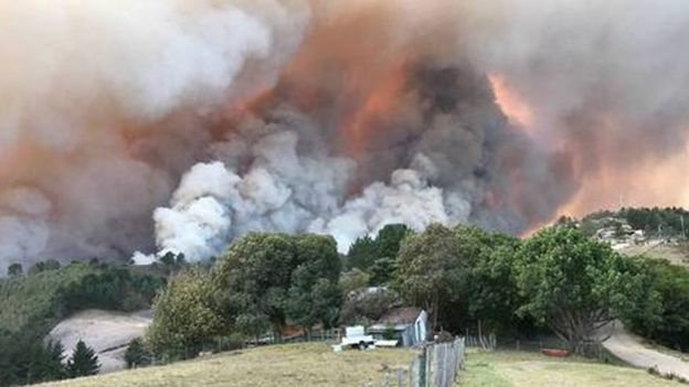 South Africa: 10,000 Knysna Residents Evacuated Amid Fire