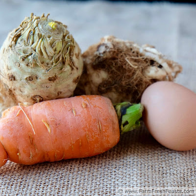 close up of a carrot, some celeriac, and an egg--the ingredients for carrot celeriac fritters