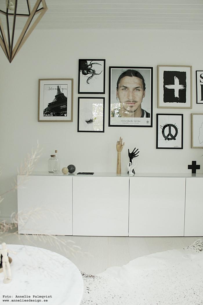 lampan döden, diamant lampa, svartvita tavlor, svartvit poster, posters, annelies design, webbutik, webbutiker, webshop, nätbutik, nätbutiker, tavelvägg, tavelväggen, tavelväggar, postervägg, fjäder, zlatan, kors, stockholm, bläckfisk, paris eiffeltornet, svartvitt, svartvit, svart och vitt, svartvit inredning, ikea bestå, city trivet,