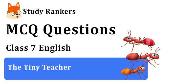 MCQ Questions for Class 7 English Chapter 1 The Tiny Teacher An Alien Hand