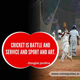 Gully Cricket Quotes