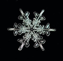 Close-up of a snowflake. Photo by Zdenek Machacek on Unsplash.