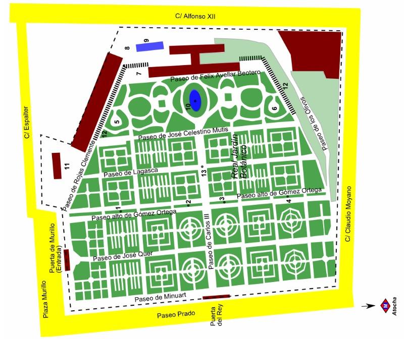 Plano del Real Jardín Botánico