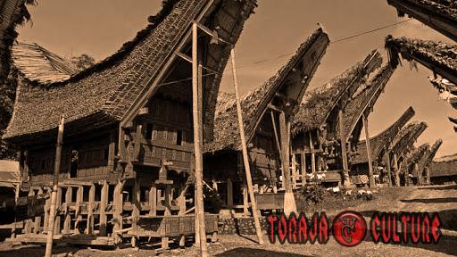 toraja culture