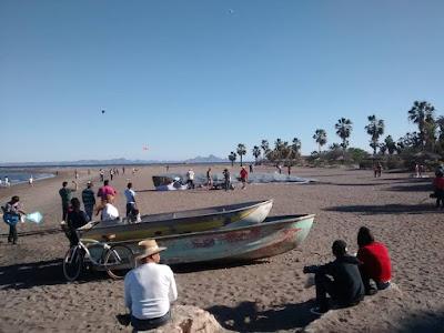 festival de la ballena azul loreto 2020