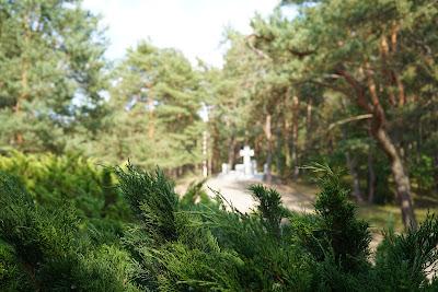 Pomnik NRK z perspektywy bramy cmentarza partyzanckiego w Wierszach