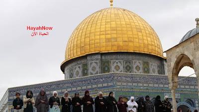 المسجد الاقصى يعيد فتح ابوابه من جديد أمام المصلين بعد اغلاق دام لاكثر من شهرين