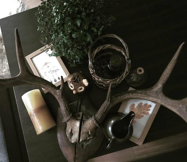 """Najnowsze artefakty - """"Hugsja"""", poroże i badyle z biedronki"""