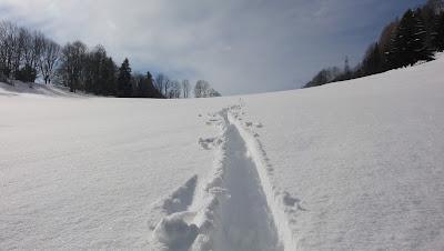 Schneespur ob Grossrieden