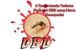 5 Tanda-tanda Terkena Penyakit DBD yang Harus Diwaspadai