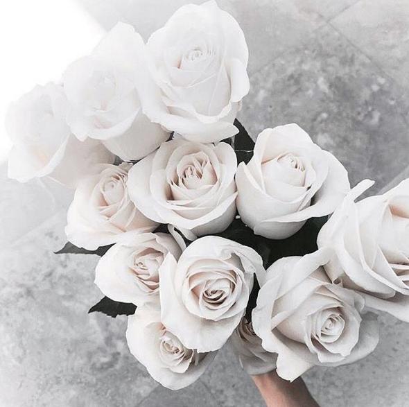white roses - @stylebymanda  [Cool Chic Style Fashion]