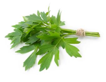 Bauer Natural Remedies