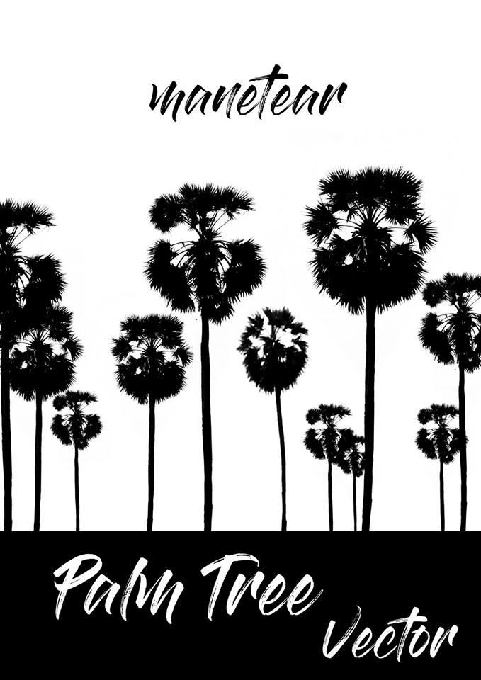 Palm Tree Khmer Palm Tree Vector free psd file