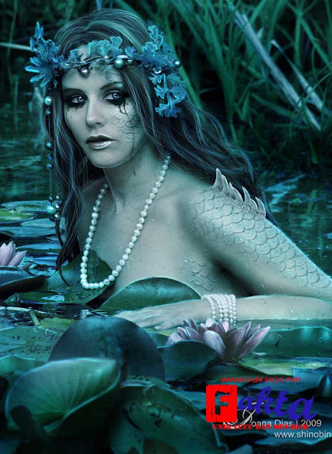 siren mahluk mitologi berbentuk setengah ikan