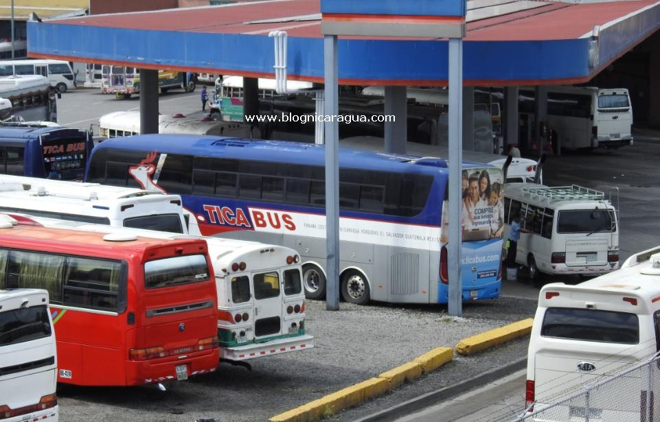 Buses para viajar a Panama
