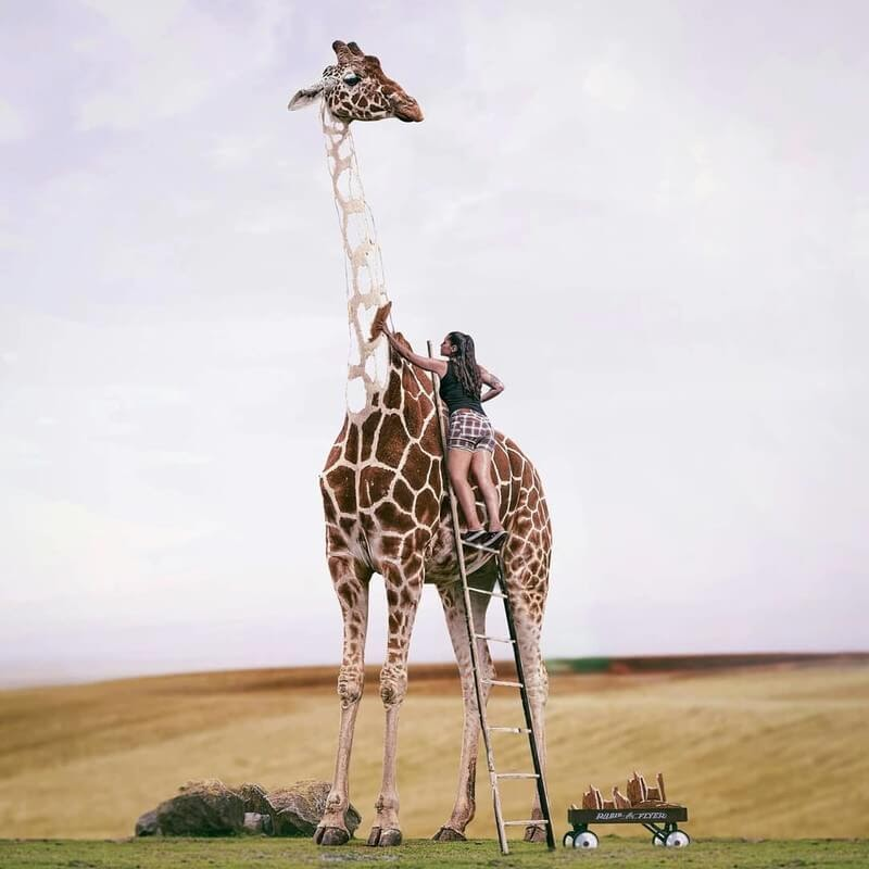 11-Giraffe-Phuoc-Nguyen-New-Worlds-in-Photo-Manipulation-www-designstack-co