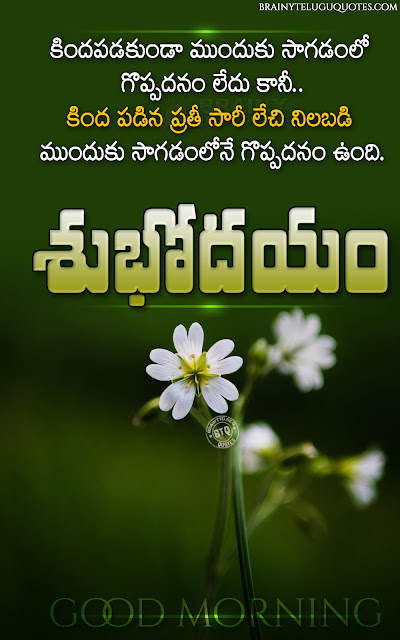 whats app sharing good morning quotes, good morning messages in telugu, telugu best subhodayam quotes