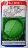 sayuran kubis, kubis takii seed, benih takii seed, manfaat kubis, jual benih kubis, toko pertanian, toko online, lmga agro