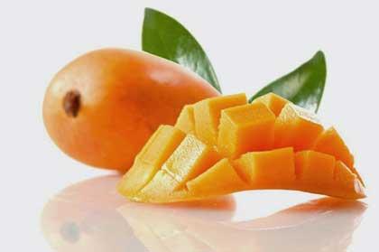 khasiat,manfaat,buah,mangga