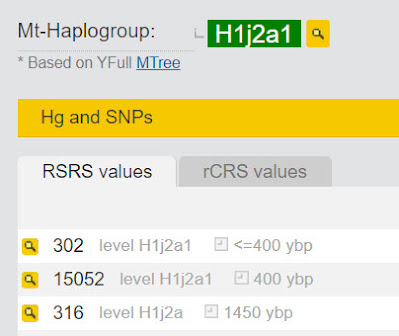 mtDNA haplogroup