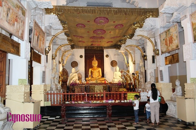 What To Do In Sri Lanka, #iCynosureInSriLanka Detailed Itinerary