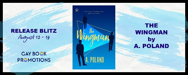 The Wingman by A. Poland Release Blitz