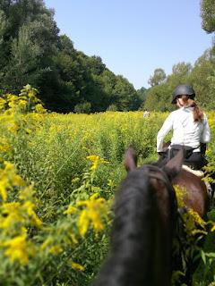 Riitta reissaa, ratsastusmatka, Horsexplore, Kroatia