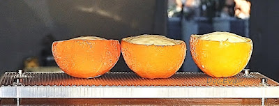 Orangen Parfait